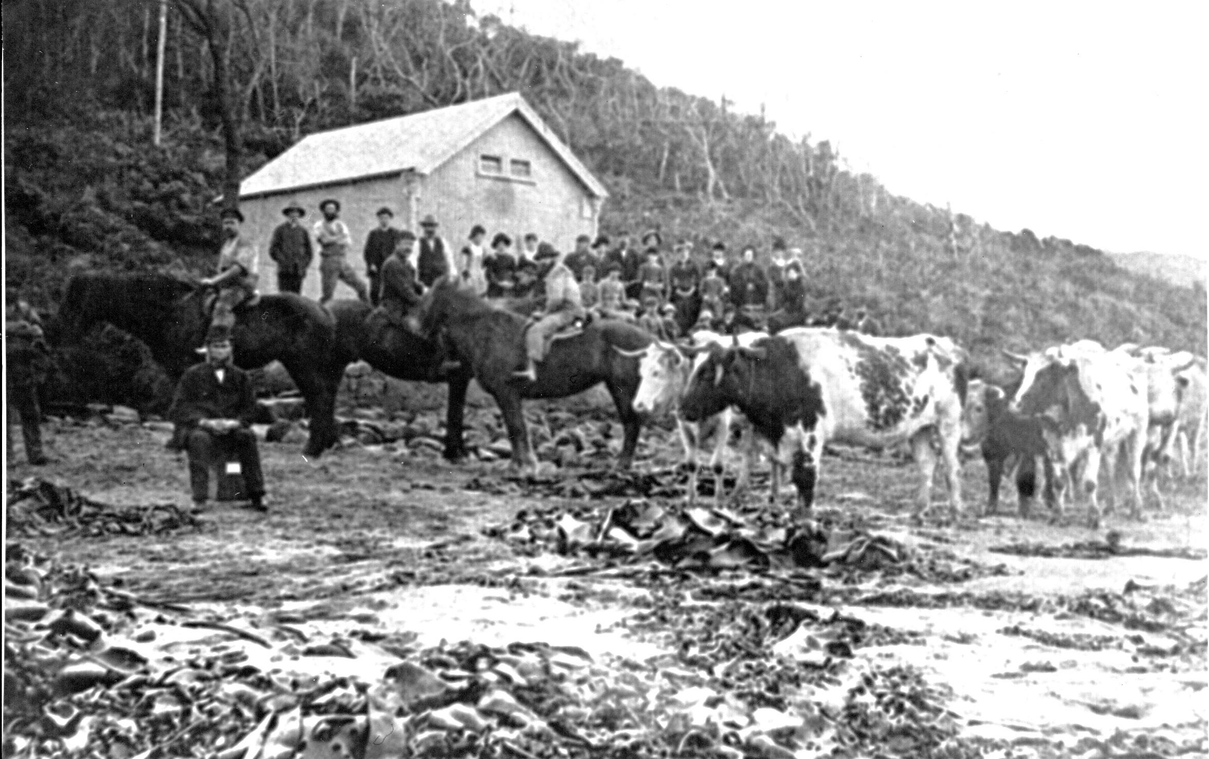Blanket Bay 1877